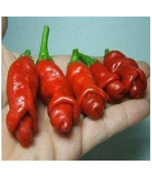 peperoni del pene