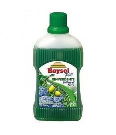 BAYSOL PLUS RINVERDENTE CONCIME 500 ML