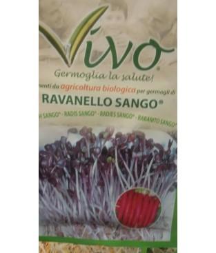 BUSTA SEMI  GERMOGLIO DI RAVANELLO SANGO   BIOLOGICO GR 10