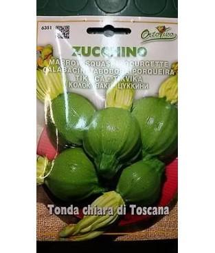 ZUCCA ZUCCHINO TONDO CHIARA TOSCANA