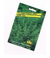 busta semi assenzio-wormwood-vermut artemisia absinthium